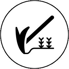 土耕栽培 / Soil culture